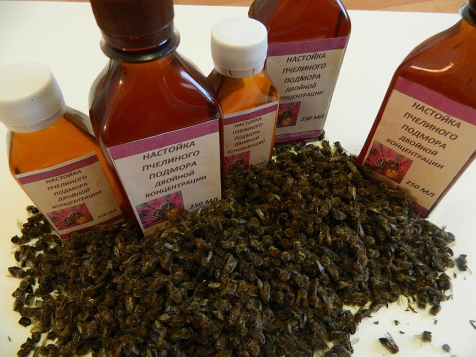 Купить настойку пчелиного подмора